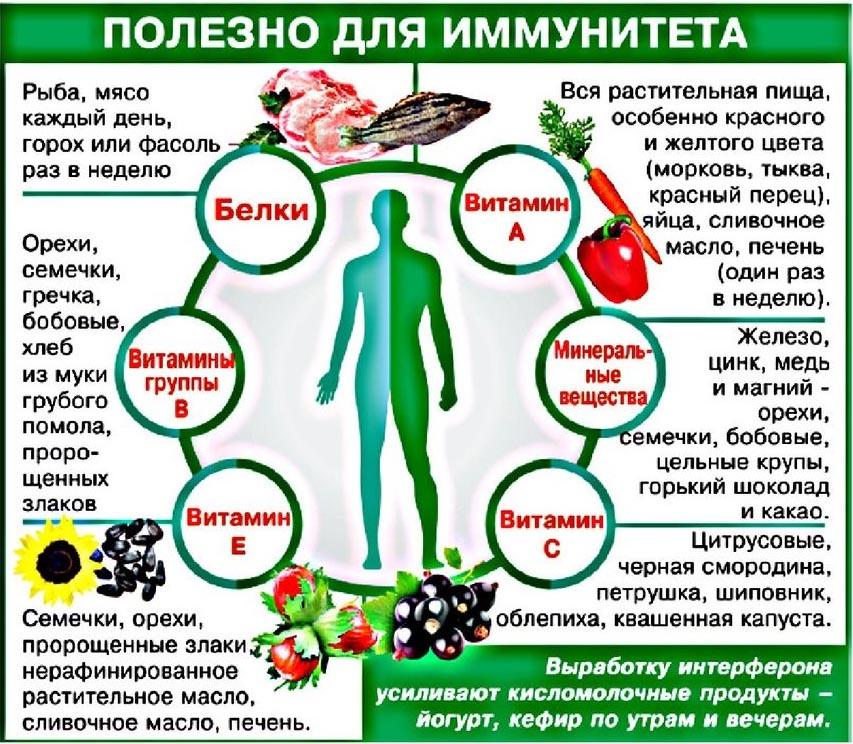 что полезно для иммунитета