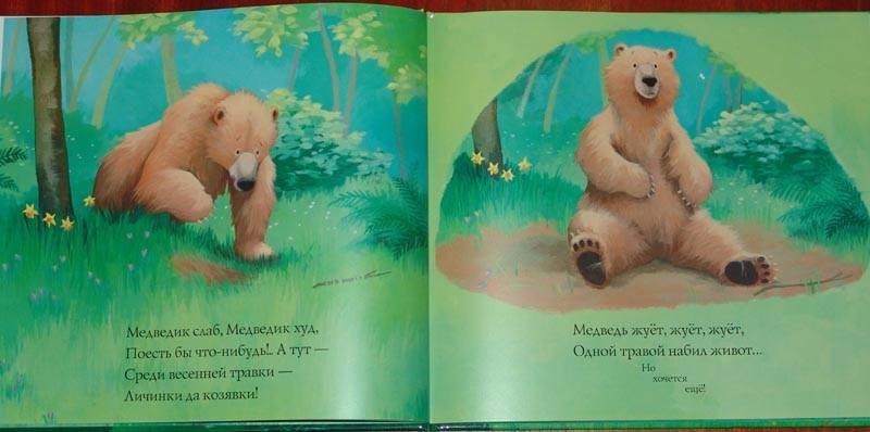 про медведика