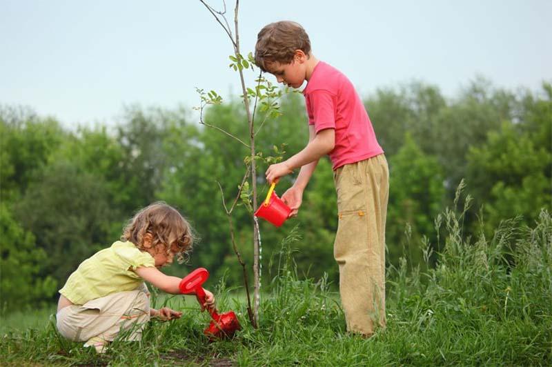 помогаем маме в саду